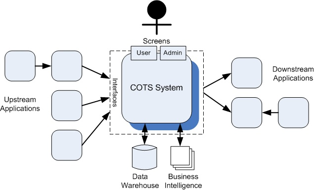 Testing COTS Systems - A Black Box in the Application Ecosystem